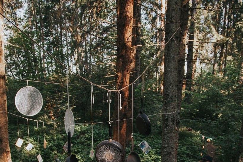 Intsikurmu pöörab Eesti juubeli puhul tähelepanu lastele