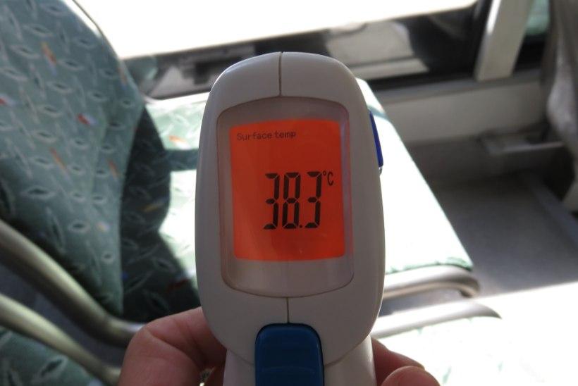BUSSIGA TALLINNAS: temperatuurid küündivad 39 kraadini