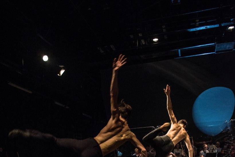 EHEDUSE TIPP: Kerese balleti jaoks salvestati malenuppude sahinat