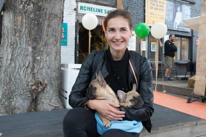 GALERII | Staaridest popimad! Eesti Instagrami-kuulsustest koerad kogunesid Kalamajas