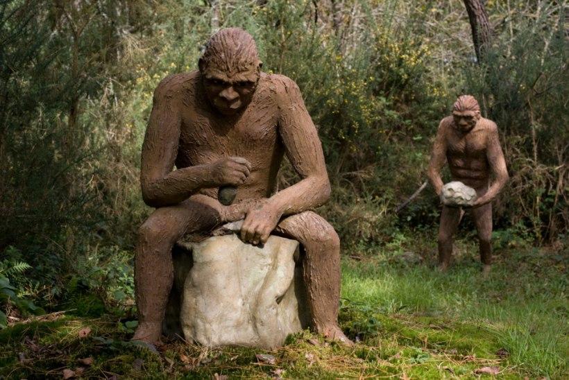 Austraalia arheoloog süüdistab inimese eellast laiskuses