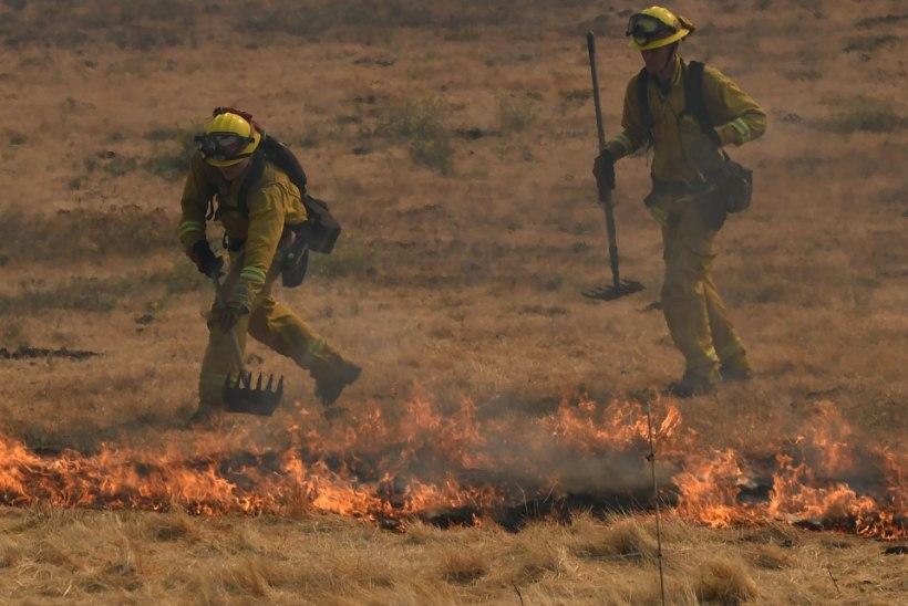 FOTOD | Californiat laastavad metsatulekahjud on osariigi ajaloo suurimad