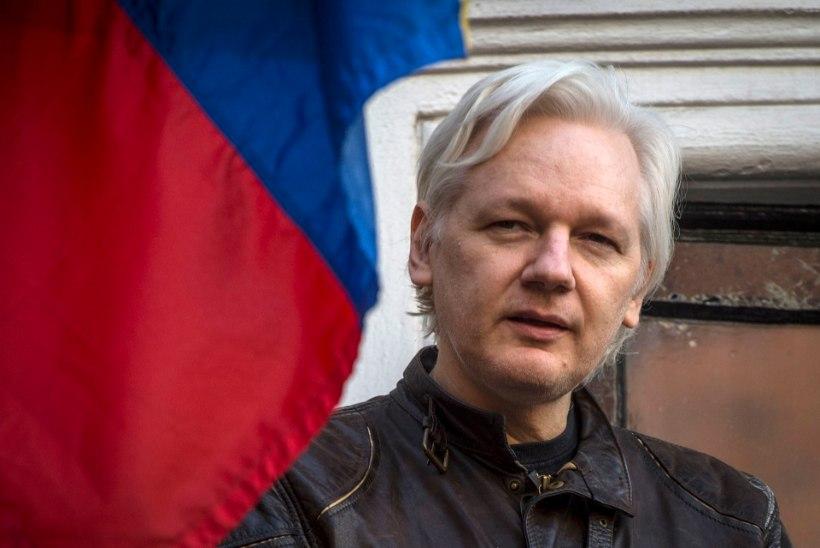 Assange võib uue pelgupaiga leida Uus-Meremaal