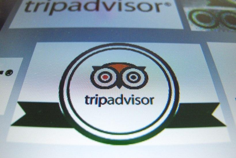 Итальянец попал в тюрьму за фальшивые комментарии в Tripadvisor