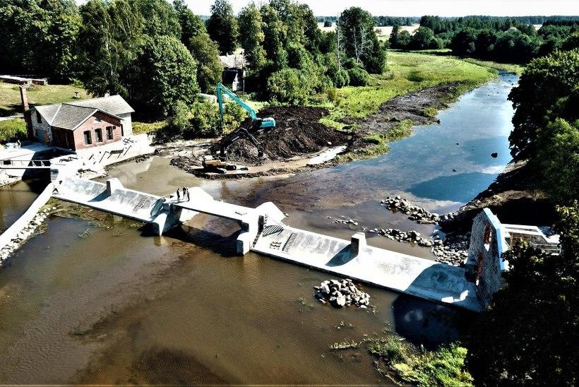 Külli Tammur ja Pärnu jõe ökosüsteemi uus algus