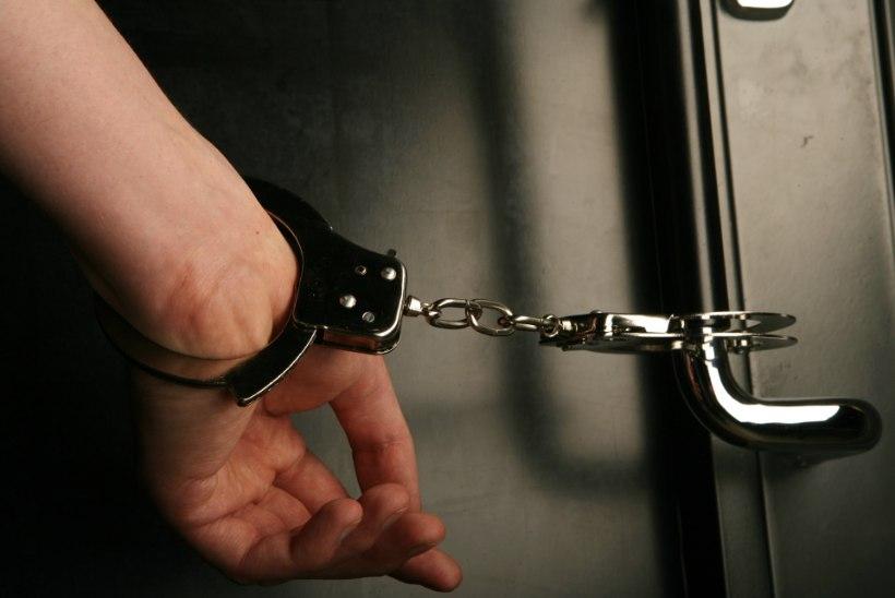 MEELEHEITLIK SAMM: hulkunud ja pahandust teinud poiss aheldati kodus käeraudadega