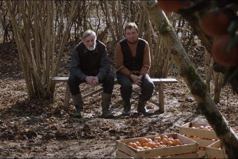 """""""Mandariinid"""" tõusis taas mainekas filmiportaalis maailma parimate sekka"""