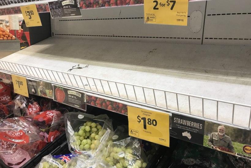 VIDEO | Austraalia maasikakasvatajad peavad ära viskama tonnide kaupa maasikaid