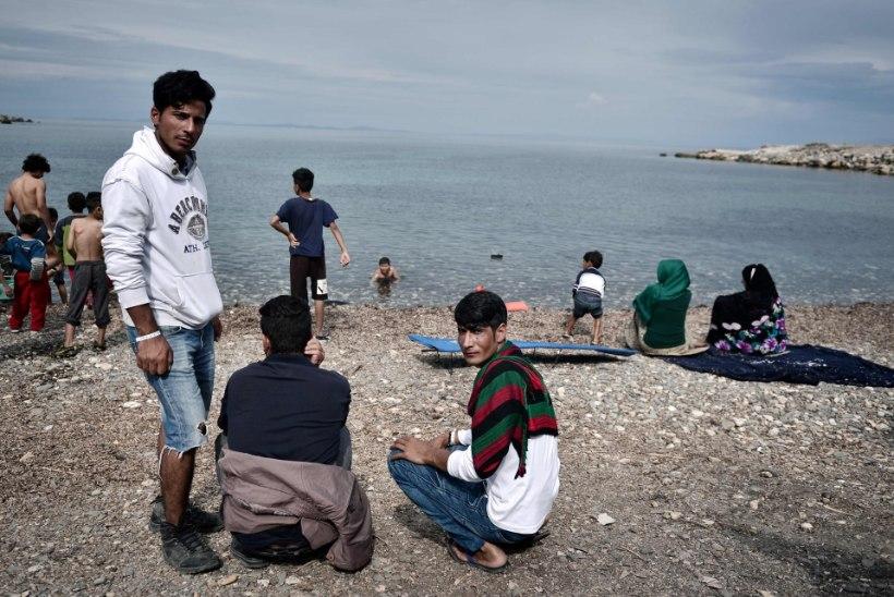 Vahistati migrante Lesbose saarele aidanud vabaühenduse juht