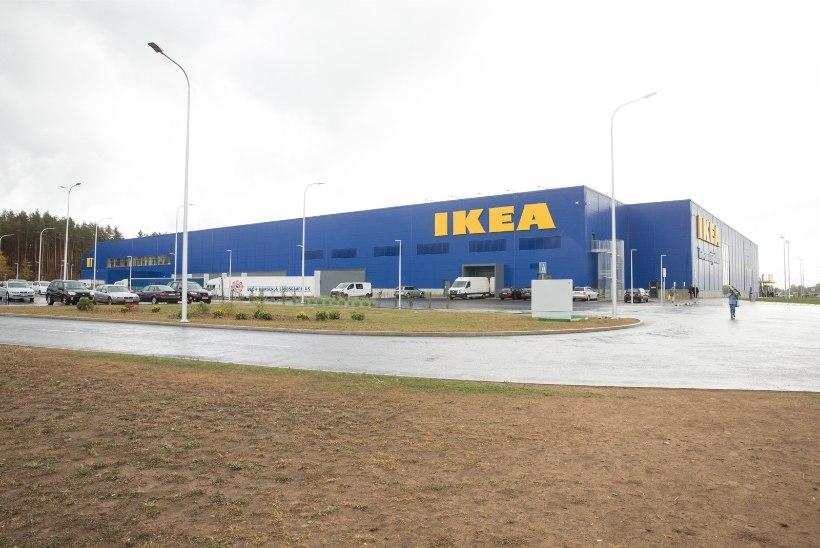GALERII | Kodu sisustama! Paavsti antud vaba päev ajas Riia IKEA umbe