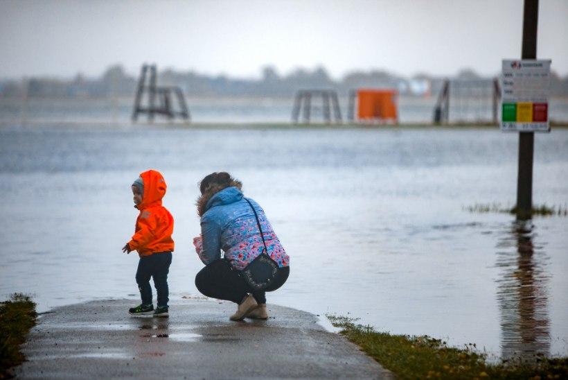 GALERII | Haapsalus on tormiturism täies hoos