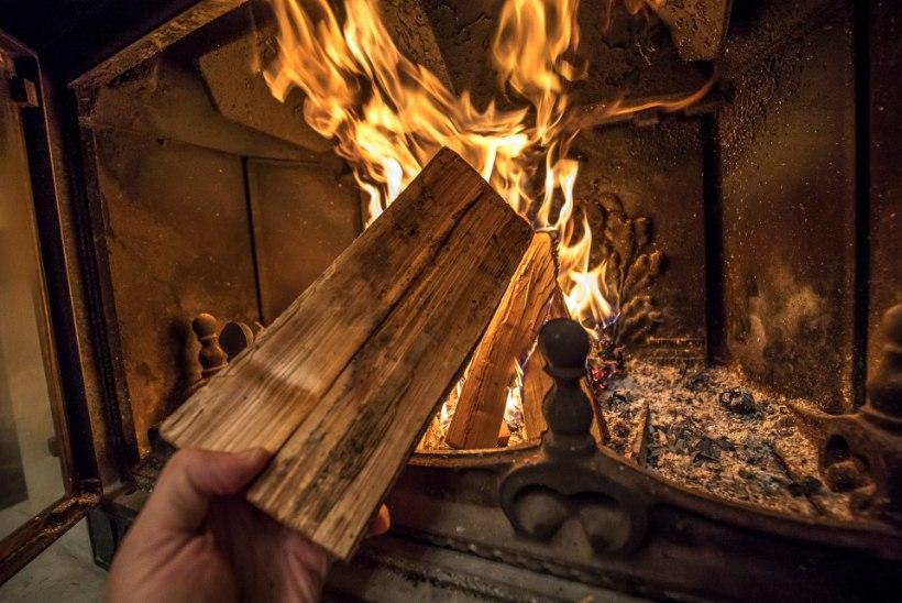 Küttepuumüüja: võin mürki võtta, et lähiajal hinnad tõusevad