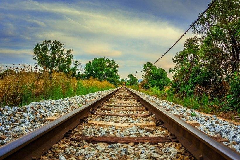 В Ида-Вирумаа украли железнодорожные рельсы на 15 000 евро