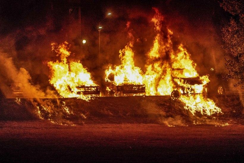 VAADE ROOTSI ELLU: Palme ja Lindh mõrvati, Rootsi poliitikute elu on ka praegu ohus