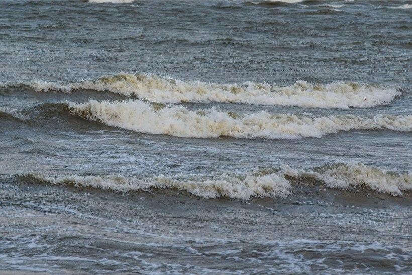 Tormituul toob merele 7,5meetrised lained, maismaal on jäiteoht