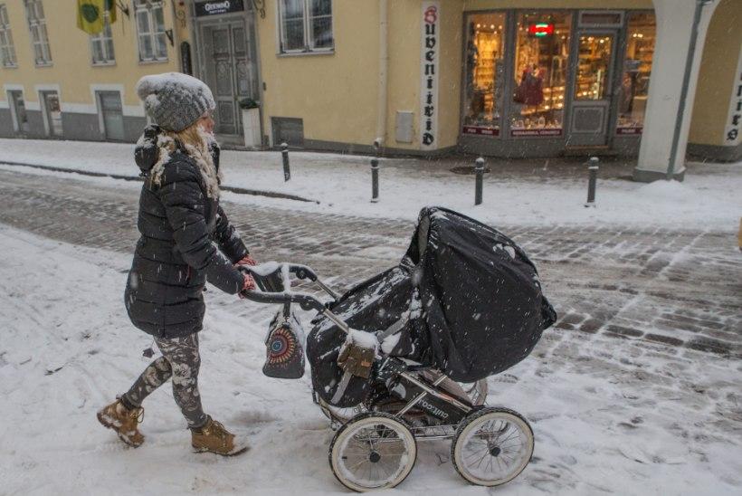 Negatiivsest iibest hoolimata kasvas Eesti rahvaarv mullu 4700 inimese võrra