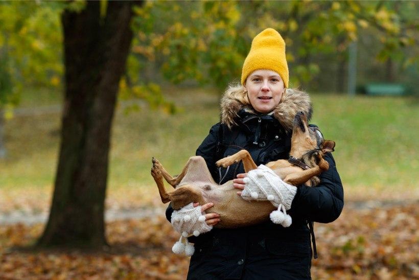 Katrin Lust peab maksma Urmas Kausile valuraha: see on ajakirjanduse võit!