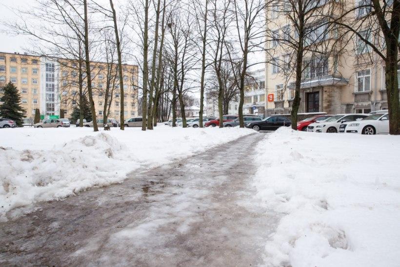GALERII | Tallinnas tuleb haiglaukseni jõudmiseks ületada porilombid ja liuväli