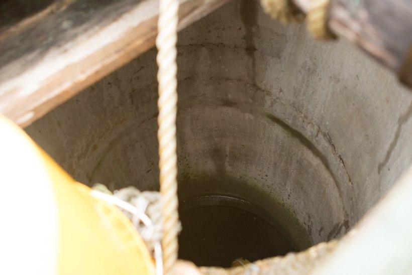 """Salajõe küla elanikel on kaevudes joogivee asemel pruun ja sogane """"boršisupp"""""""