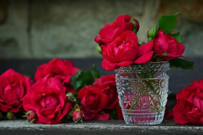 Tulbile jääkuubikuid ja roosile kuuma ehk Nipid, kuidas täna saadud lilli kauem kaunina hoida