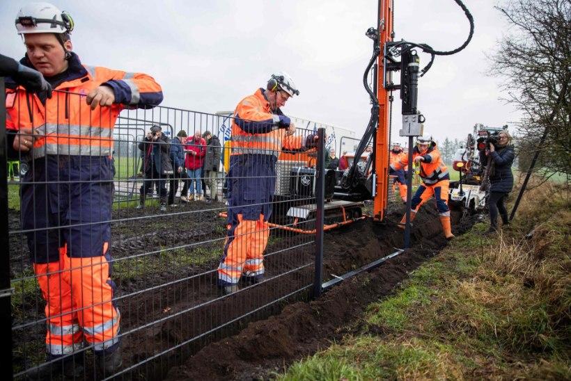 Taani alustas piirile Saksamaaga kaitsetara ehitamist