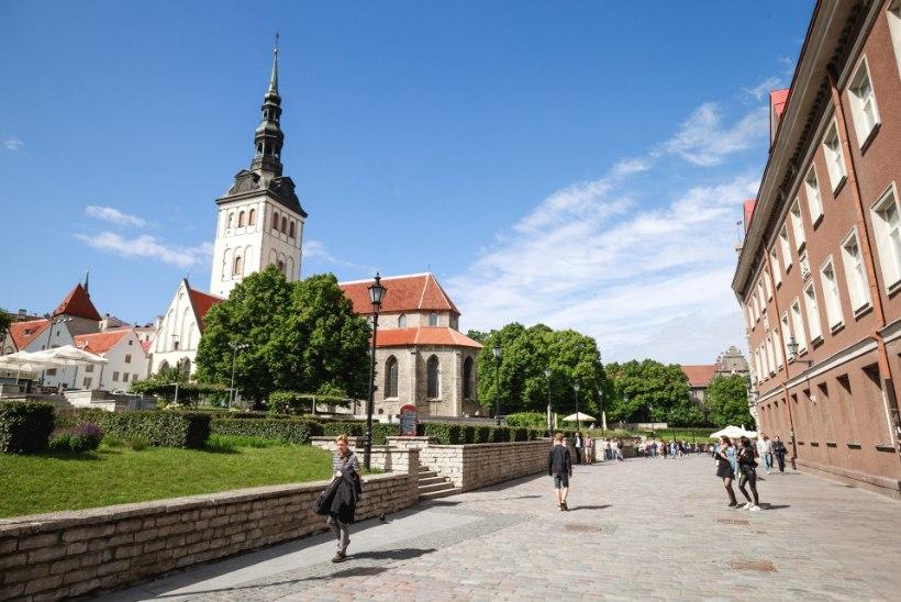 Vihane ärimees lubab keset Tallinna vanalinna kartulipõllu rajada