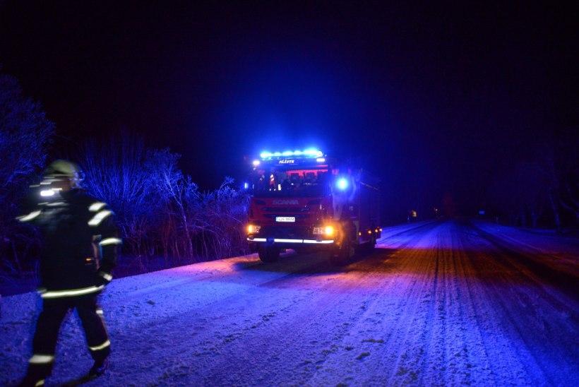 FOTOD ÕNNETUSPAIGAST  | Tartumaal jooksis kits autole ette