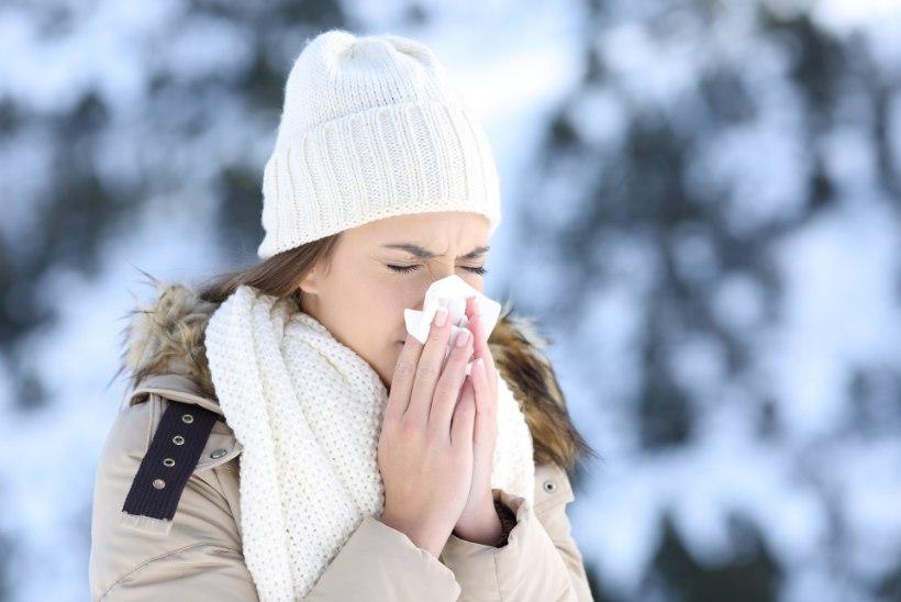ÄRA LEVITA VIIRUST! Kui põed grippi, hoia tervetest vähemalt meeter eemale