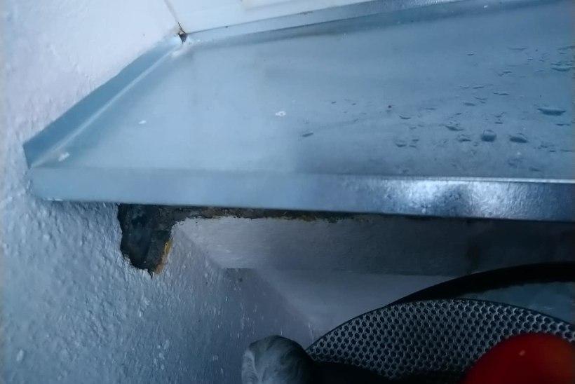 """TUSANE KLIENT: """"Kui aknaid vahetades midagi  lõhutakse, tuleks see ka ära parandada!"""""""