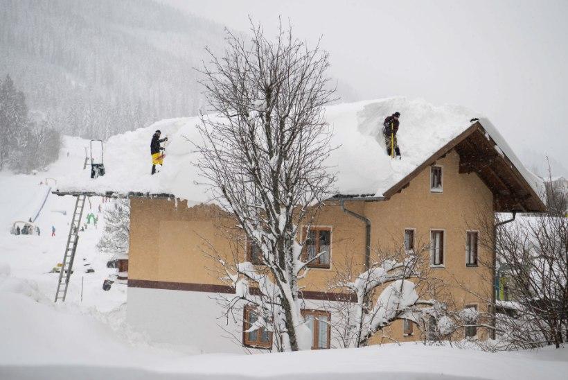 KATASTROOF: Alpides sadas maha neli meetrit lund