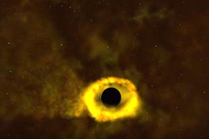 VIDEO | Vaata, kuidas must auk hävitab meie Päikese suuruse tähe