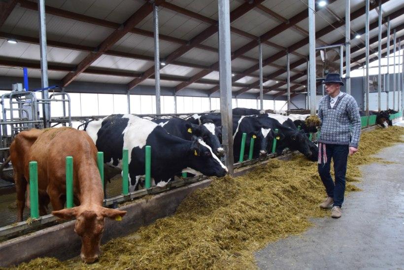 GALERII | Võrumaal asuv Nopri talu avas seitsme tärniga nutilauda