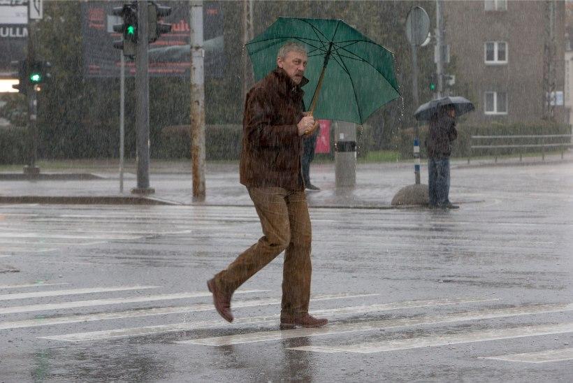 Las kallab: uuel nädalal jätkub vihmasadu ja tugev tuul