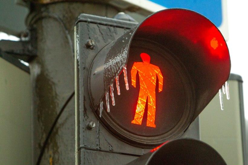 Viimsis punase tulega teed ületanud naine sai löögi mikro- ja linnaliinibussilt