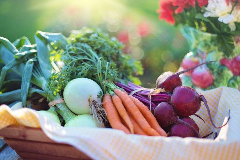 10 lihtsat viisi, kuidas oma pere keskkonnajälge vähendada