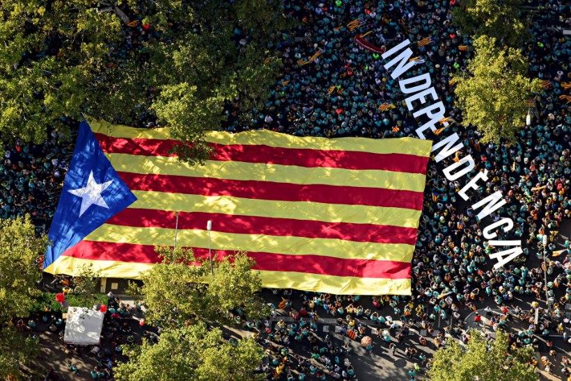 HEA UUDIS! Kataloonia MM-ralli toimub rahutustest hoolimata