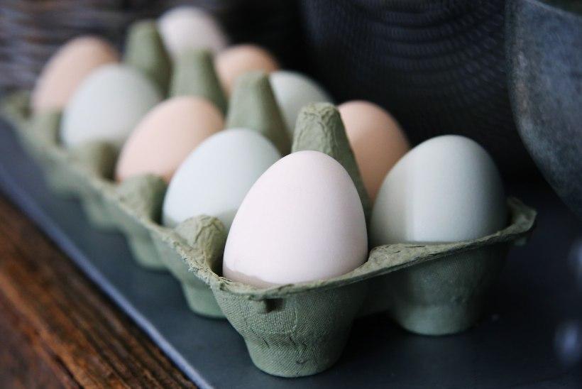 9 põnevat viisi, kuidas küpsetamisel muna asendada