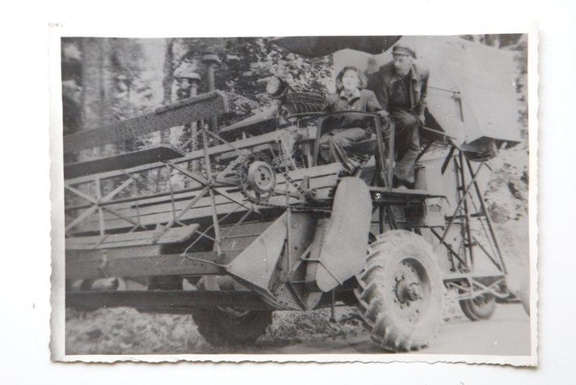Tõnis Erilaiu lehesaba | Kuidas põllumajandusmuuseumi süütaja tabamata jäi
