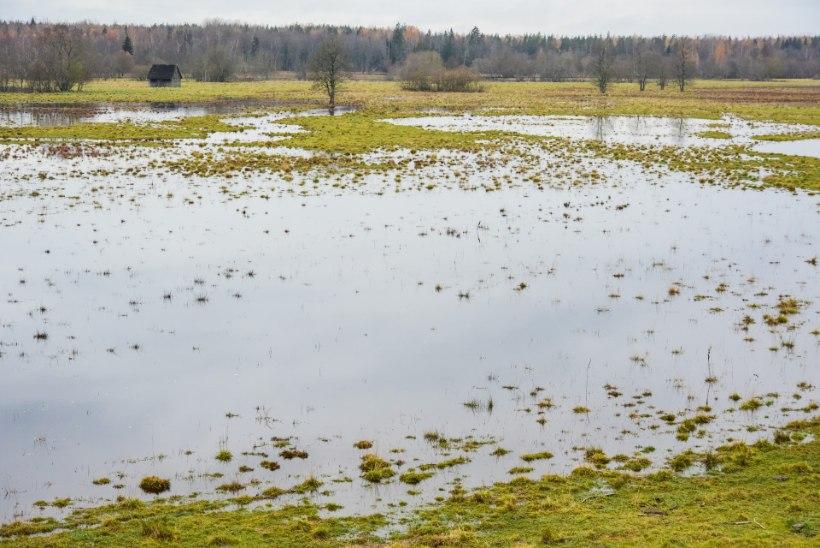 FOTOD | Soomaa viies aastaaeg algas üleujutusega