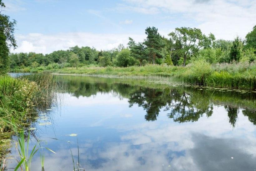 Lagedi Kodu – avastamata looduskaunis piirkond, mis asub Tallinna külje all!