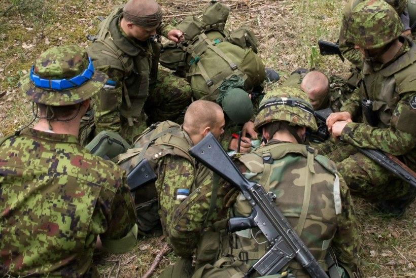Seisukoht | Kas reservväelane on kana?