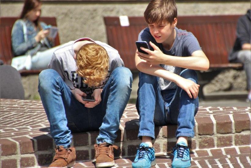 KUIDAS PEATADA KIUSAMINE? Tavapäraseks on saanud ka kius telefonis või internetis