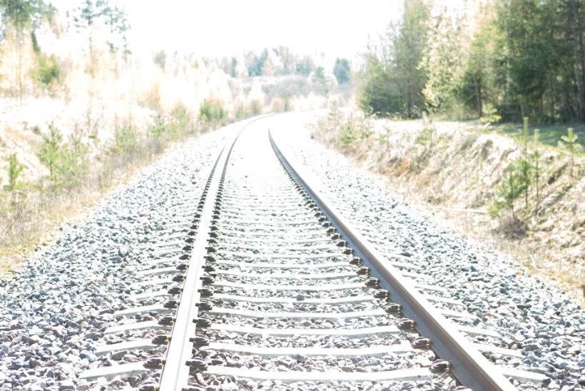 Tõnis Erilaiu lehesaba | Kuidas algas korrapärane rongiliiklus Peterburi
