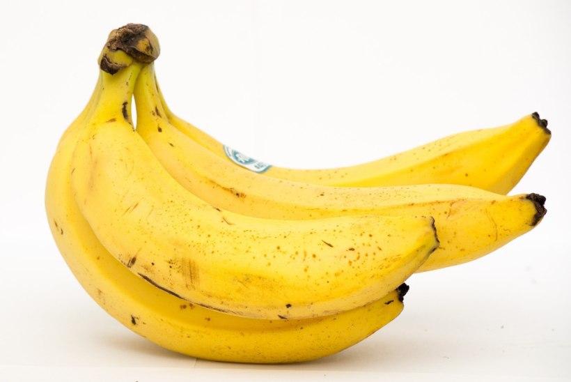 LUGEJA KÜSIB | Kuidas poest ostetud tooreste banaanide küpsemist kiirendada?