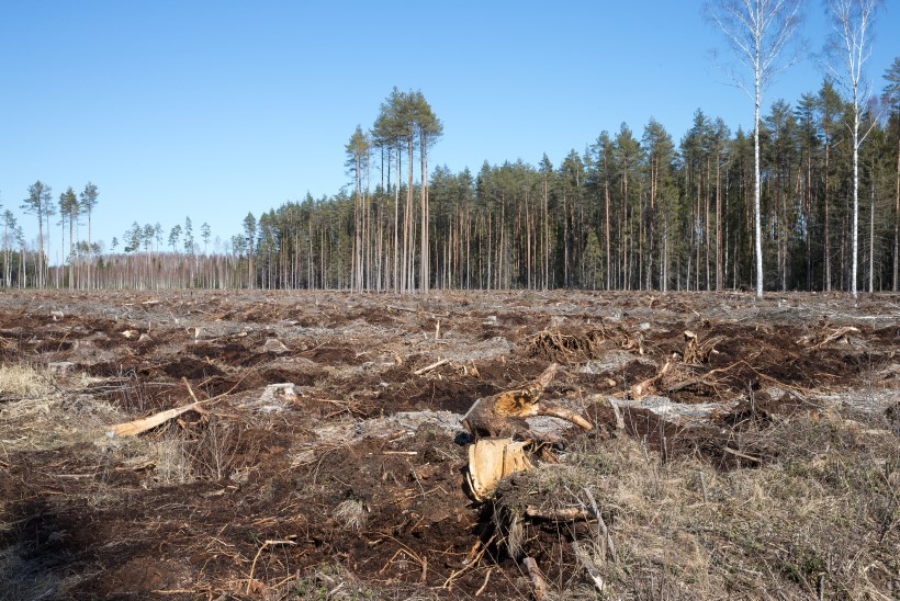Ekspert hoiatab: minister Järviku maaostuprogramm meelitaks skeemitajaid