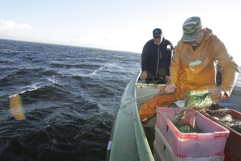 Kalurid võivad homsest Peipsil põhjanoodaga püüda
