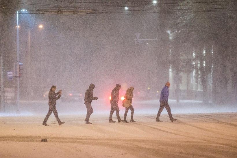 ILMATAAT ARMU EI ANNA: uuel nädalal sajab vihma, lörtsi ja ka lund