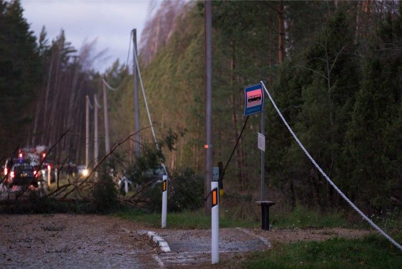 TORMIBLOGI | Võru linn jäi elektri ja veeta ning piiriületus oli häiritud, Lõuna-Eestis on maas Riigivõrk