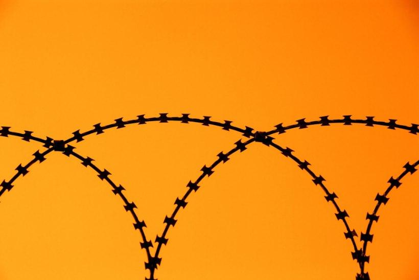 Nagu moodsa aja Romeo: armuvalus poiss ronis üle kõrge vanglamüüri
