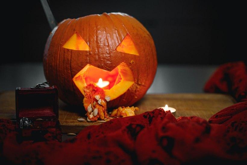 VIDEO | Halloween'i-vihkaja õppetunnid ehk Vaata, miks tuleks täna kõrvitsaid kraapida!